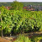 Jugenheim in Rheinhessen/De/