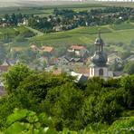 Partenheim. Jugenheim. /De/.
