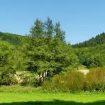 Naturpark Saar-Hunsrück./De/.