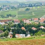 Partenheim. Jugenheim./De/.