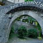 Burg Guttenberg. Deutschland.