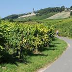 Rheinfahrt. Niederwalddenkmal.