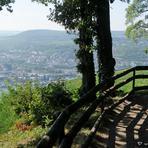 Rheinfahrt. Niederwald.