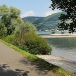 Rhein. Assmannshausen.
