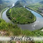 Mosel. Rheinland-Pfalz. Deutschland. /De/. Germany.
