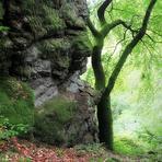 Saar-Hunsrück-Steig. /De/.