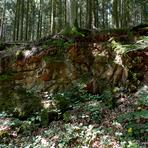 Lemberg. Nahe-Region.