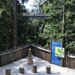 Bayerischer Wald.
