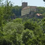 Greifvögel. Burg Guttenberg.
